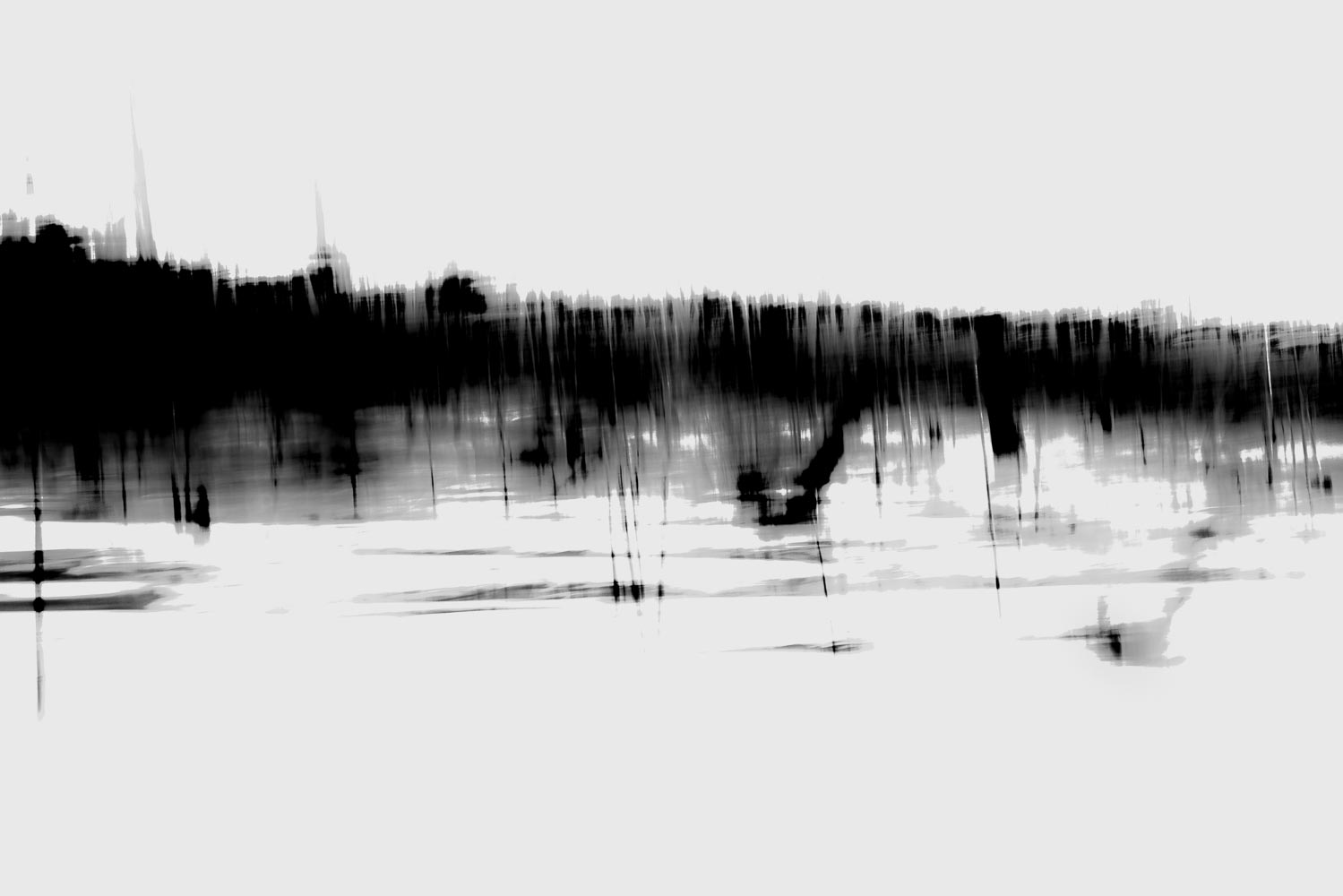 LANDSCHAP 2 - digital photography - dimensions variable - 2018